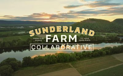 Pick Up Your Sunderland Farm Collaborative Orders at Progression!